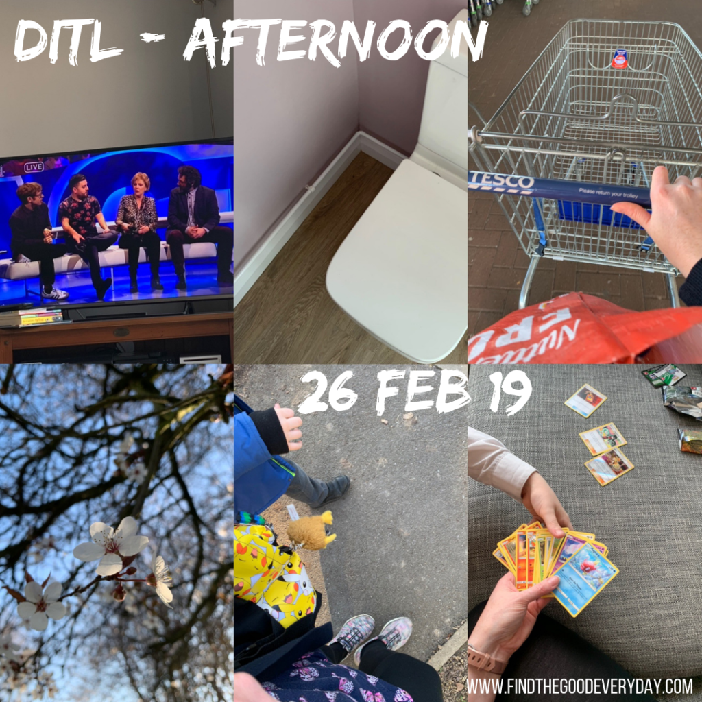 Day in the Life - 26 Feb 2019 - Afternoon