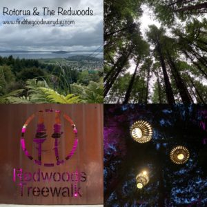 New Zealand Trip Highlights - Rotorua and The Redwoods
