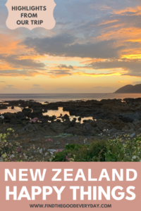 New Zealand Happy Things Title Image - Highlights from our trip