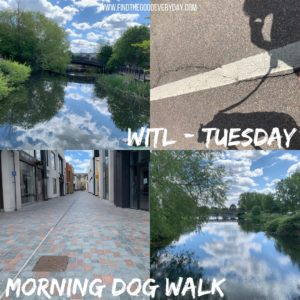 Week in the Life: Tuesday - Morning Dog Walk