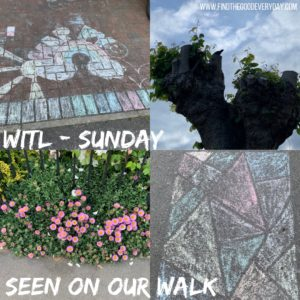 Week in the Life: Sunday - seen on our walk