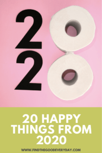 20 Happy Things from 2020 Pin Image
