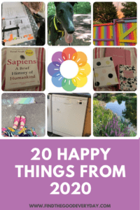 Pin image - 20 happy things from 2020