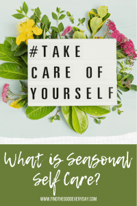 Pin Image entitled 'What is seasonal self care?' And showing an image of a light box with the hashtag Take Care of Yourself surrounded by flowers.
