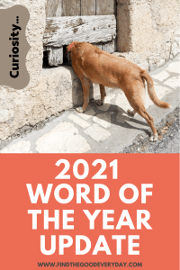 Curiosity - a Word of the Year Update. Pin with an image of a dog sticking his head in a gap under an old looking wooden door.