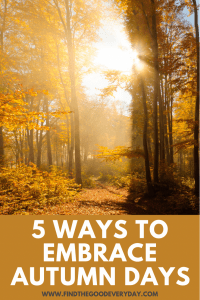5 Ways to Embrace Autumn Days Pinnable image with a photo of sunlit trees in Autumn.